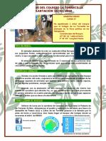 """Ficha individual de la Salida """"Plantar Un Árbol""""  BOSQUE O2 - CEIP Torrecilla (Lorca)"""