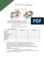 286601927-Examen-del-Tema-1-de-Ciencias-Naturales-de-2ºESO-Los-Seres-Vivos.pdf
