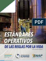 Est†Ndares Operativos RpV v0 ABRIL 2016