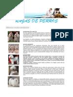 Razas de perros_2.pdf