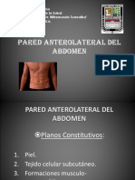 Abdomen Pared Anterolateral