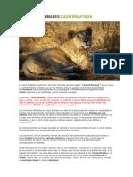 Ojo - Turismo y Animales