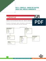 oracle_ambiente.pdf