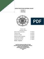 LAPORAN_PRAKTIKUM_BIOKIMIA_DASAR_PROTEIN.docx