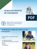 PRINCIPIOS BASICOS FOTOGRAFIA