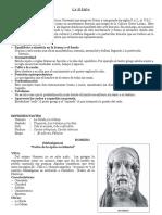 lailadaylaeneida-140504223242-phpapp01