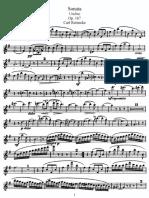 F_RCBF.pdf
