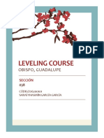 Leveling Course