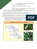 Plantele Medicinale - Compozitia Plantelor Medicinale