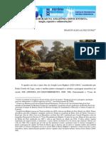 Paisagens Rurais Na Amazônia Oitocentista