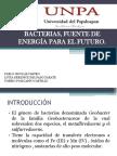 Articulo Geobacter