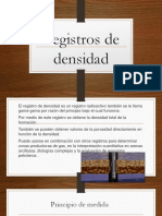 Petrofisica