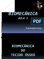 Aula 3 Biomecânica - Tecido Ósseo.pdf