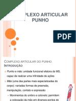 4. Punho.pdf