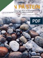 230 Stein-Pa-Stein-Arbeidsbok.pdf