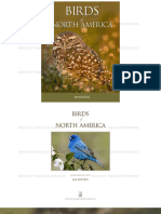 Birds of America PDF