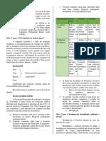 Estudo Da Prova (15.02)