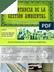 IMPORTANCIA DE LA GESTIÓN AMBIENTAL