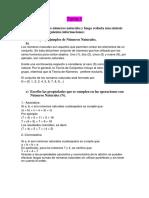 Tema 1 ppm