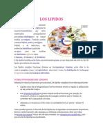 LOS LIPIDOS.docx