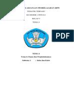 RPP KLS 5 k13