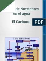 Capitulo 5 Nutrientes Carbono