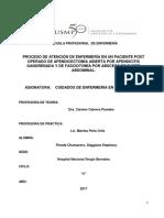 PROCESO DE ATENCIÓN DE ENFERMERÍA EN UN PACIENTE POST OPERADO DE APENDICECTOMÍA ABIERTA