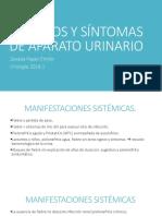 Urologia Semiologia