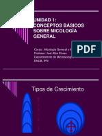 2.- Crecimiento Micelio y Conidiación