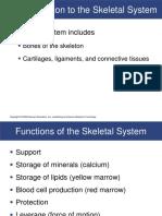 08R - Skeletal Sytem