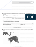 naturales1.pdf