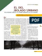 El papel del arbolado urbano