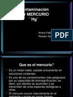 Contaminaci%F3n Por Mercurio