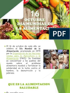Alimentacion Saludable Nutrientes Leche