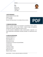 CV Renzo Melgar Gutierrez