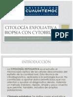 citologia exfoliativa 2018