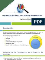 Organización y Ciclo de Vida de Un Proyecto
