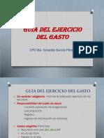 Guia Ejercicio Del Gasto Pei