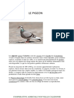 le-pigeon.pdf