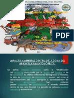 Impacto Ambiental Cierre de Camino Cierre de Causes Cierre de Campamento Restauraciòn de Areas Del Aprovechamiento Forestal