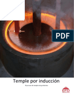 Temple Induccion 1