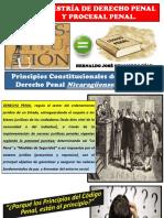 Principios Constitucionales Del Derecho Penal