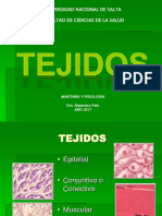 4- TEJIDOS