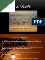 LA-SABANA-exposicion.pptx