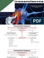 Neurotransmisores_RCPT-3