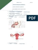Evaluación Diagnostica de Biología 3