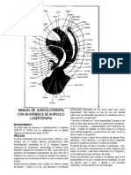 Auriculoterapia2.pdf