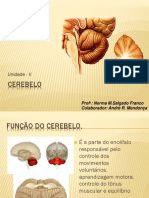 06_cerebelo