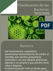 clasificacindelasbacterias-131107204235-phpapp01.pptx