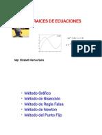 RAICES DE ECUACIONES 2017 MINAS.pdf